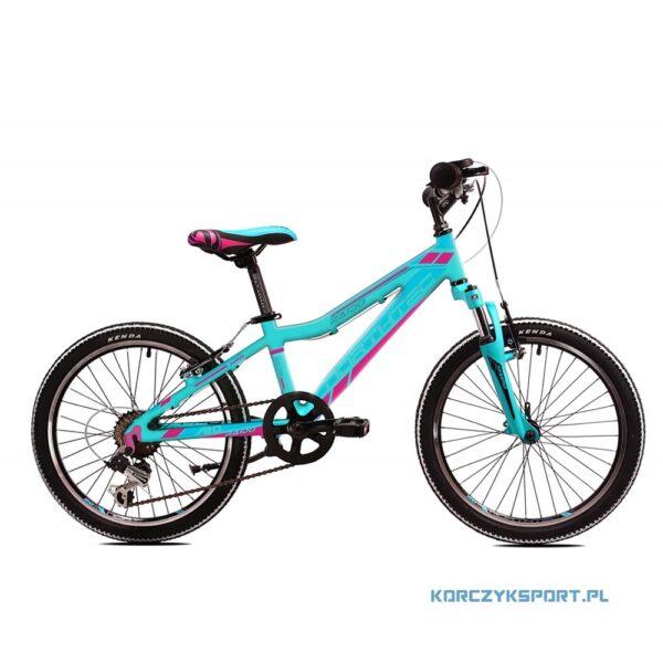 dziecięcy rower górski Northtec Raido Turkusowo-Różowy 20 10 2020 sklep